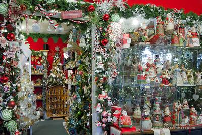 20130215 SmartCPA Dianes Stores-163_WEB