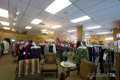 20130215 SmartCPA Dianes Stores-176_WEB