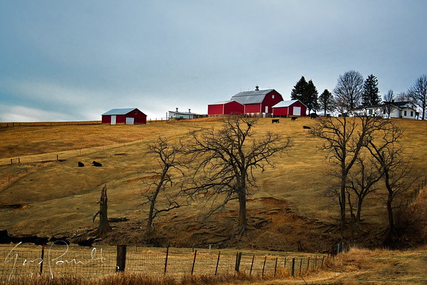 Barn on Hill