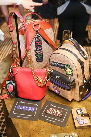 Disney x Coach Collection and Pop-Up Launch