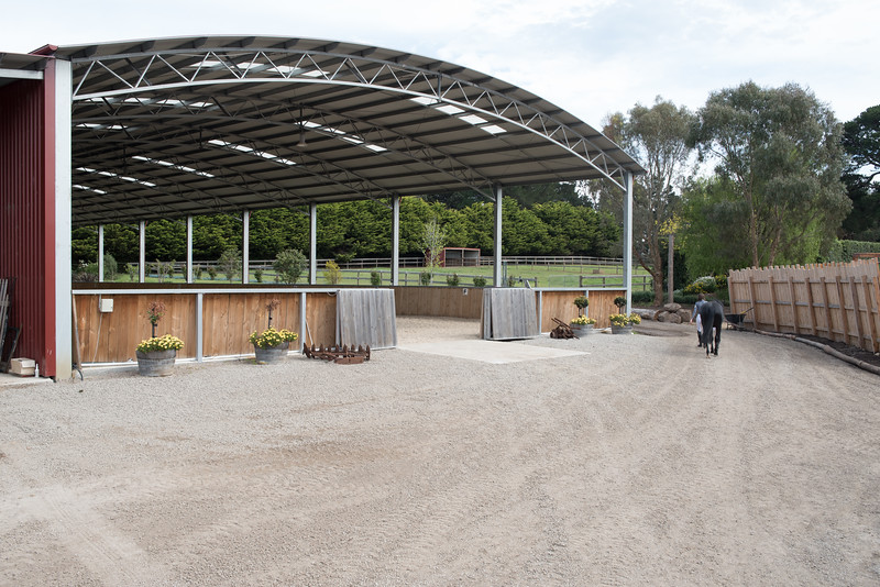 arena (107)