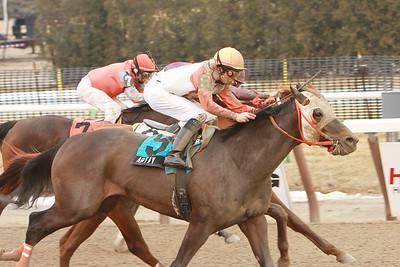 Aqueduct 3.7.09 The Tobaggan H., Gr III Horse: Ah Day wins Jockey Sheldon Russell Trainer: King T. Leatherbury Owner: K.T. Leatherbury Assoc. Inc. sk