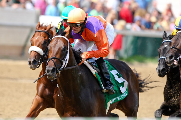 My Pal Charlie (Indian Charlie), Jamie Theriot up, runs in the Northern Dancer S. at Churchill Downs 6.14.2008