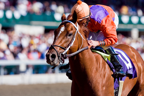 'Map Of The World' (Hennessy), Robby Albarado up, breaks Maiden at Keeneland. 10.09.2008mw (No Photo Credit Please)
