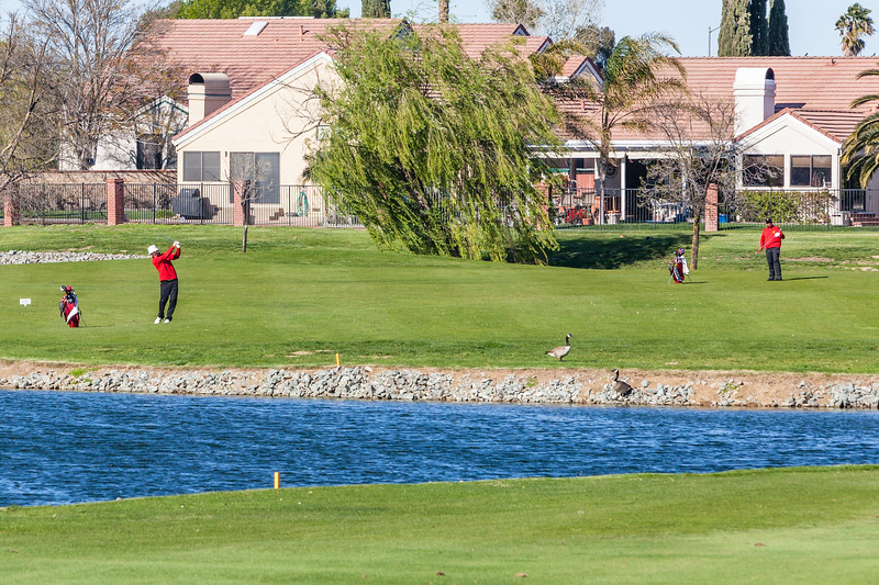Golf-1181.jpg