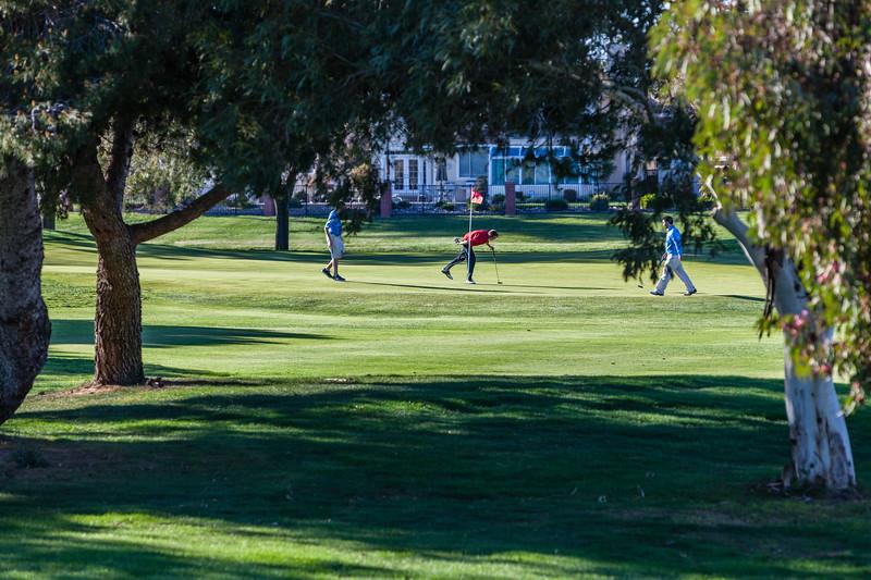 Golf-1237.jpg