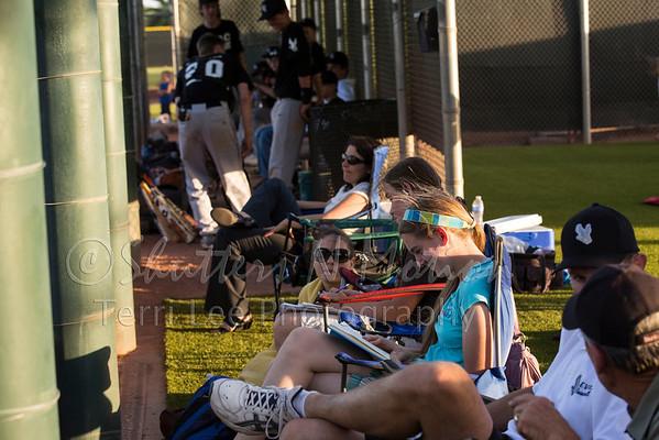 EVAC Baseball 2013