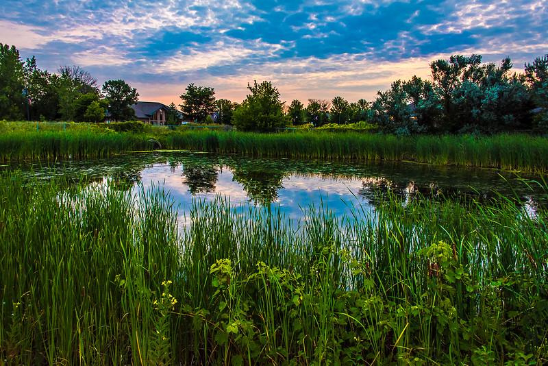 Pond in Saginaw