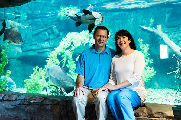 engagement_loveland_aquarium-810072