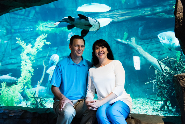 engagement_loveland_aquarium-810058