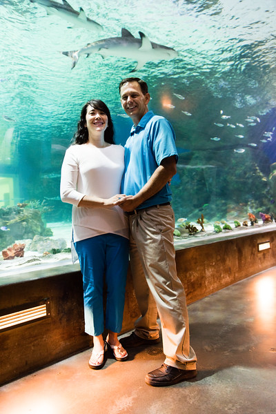 engagement_loveland_aquarium-810096