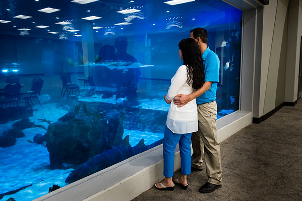 engagement_loveland_aquarium-819764