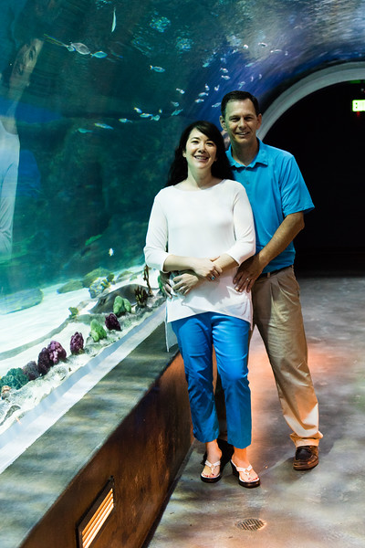 engagement_loveland_aquarium-810083