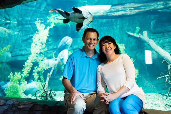 engagement_loveland_aquarium-810063