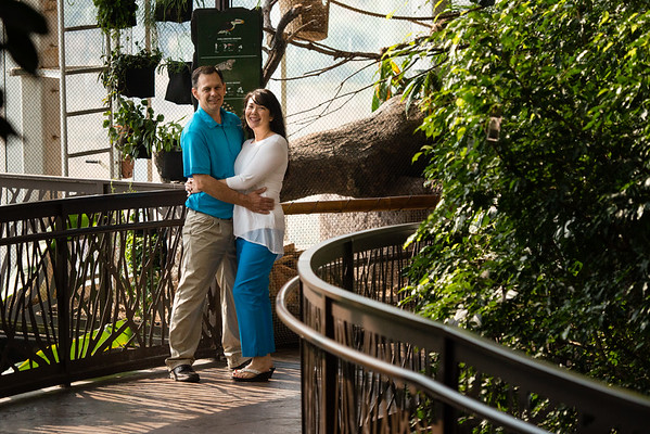 engagement_loveland_aquarium-806415