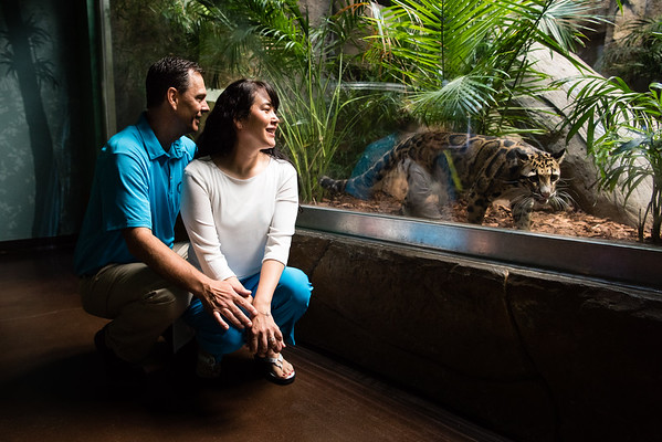 engagement_loveland_aquarium-819941