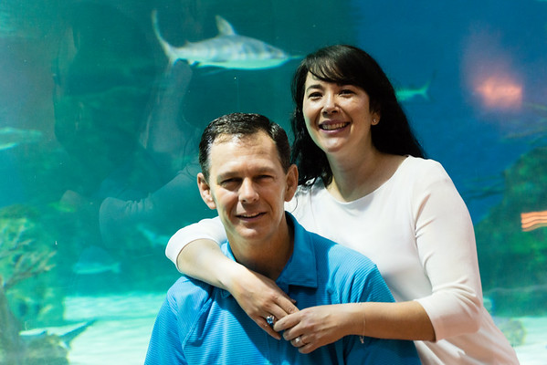 engagement_loveland_aquarium-806425