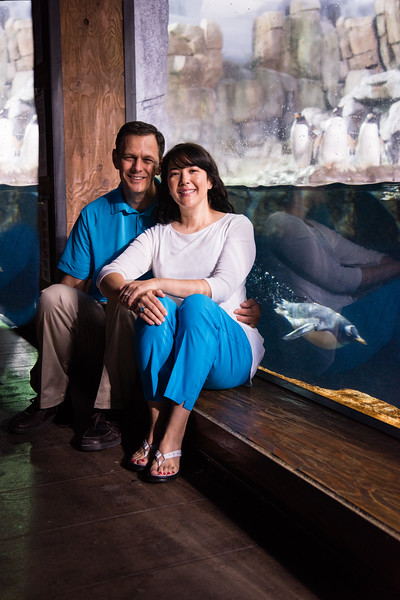 engagement_loveland_aquarium-819899