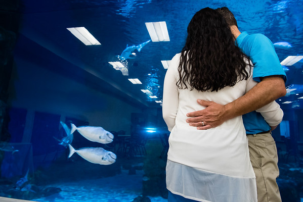 engagement_loveland_aquarium-819792