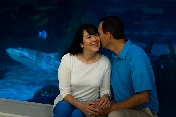 engagement_loveland_aquarium-806378