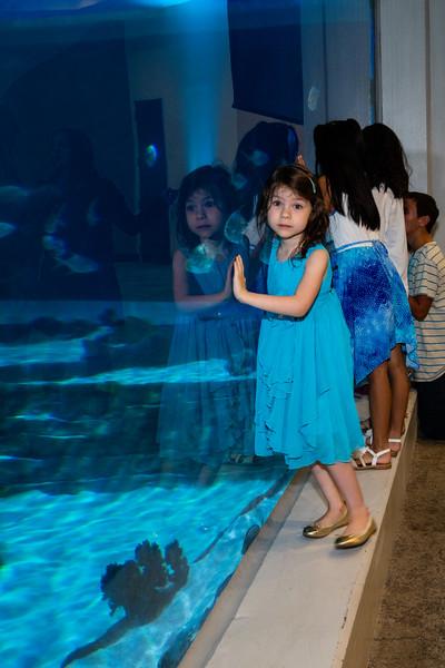 aquarium_reception-854240