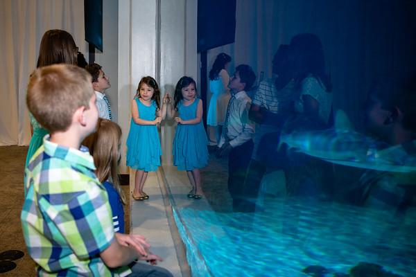 aquarium_reception-854201