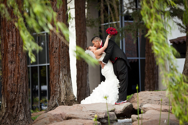 Stephanie Anibal Wedding