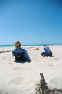 A Lizard watches a man sitting on a remote beach in the Exuma Islands, Bahamas.