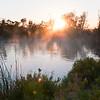 Australian Billabong at Dawn