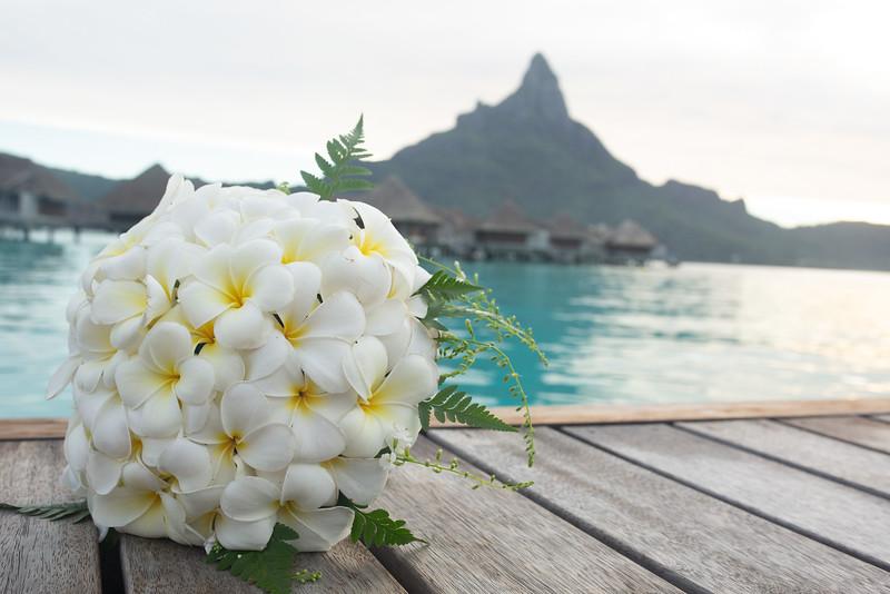 Tahiti 2019 Sneak Peek 1993