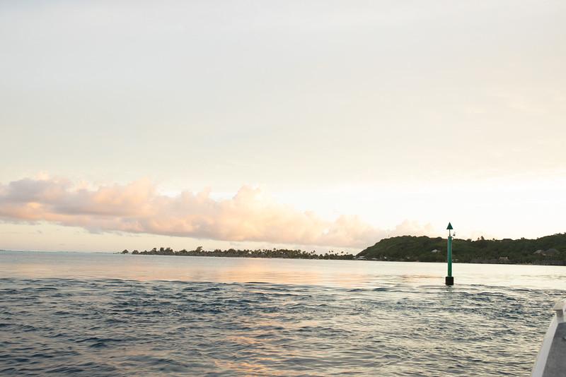 Tahiti 2019 Sneak Peek 2050