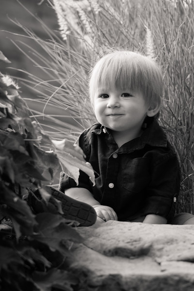 birthday-portraits-red-butte-gardens-800048