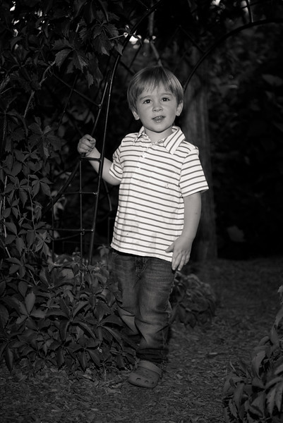 birthday-portraits-red-butte-gardens-811038
