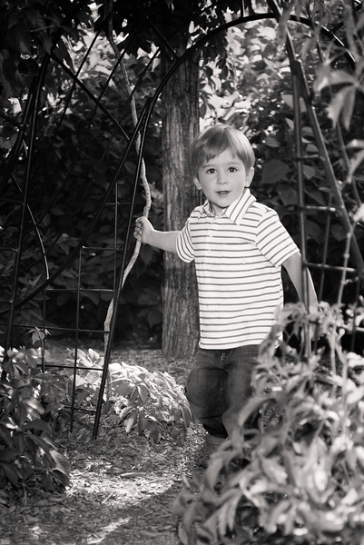 birthday-portraits-red-butte-gardens-811003