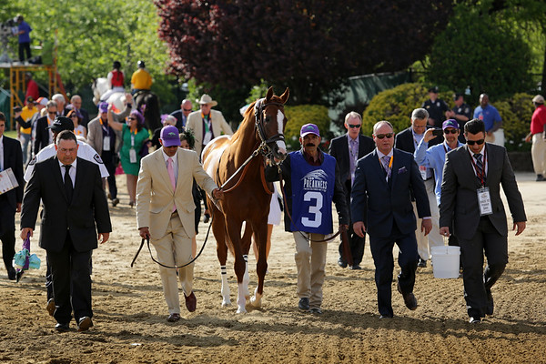 California Chrome (Lucky Pulpit) and jockey Victor Espinoza win the Preakness (Gr I) at Pimlico Racecourse 5/17/14. Trainer: Art Sherman. Owner: Steven Coburn & Perry Martin