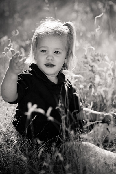 family-portraits-red-butte-garden-813397