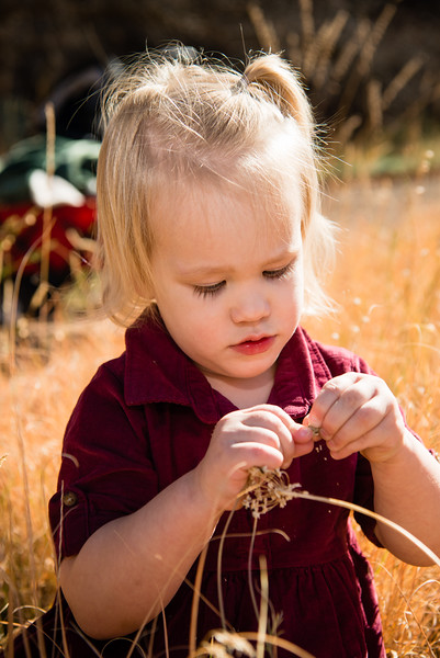 family-portraits-red-butte-garden-802870