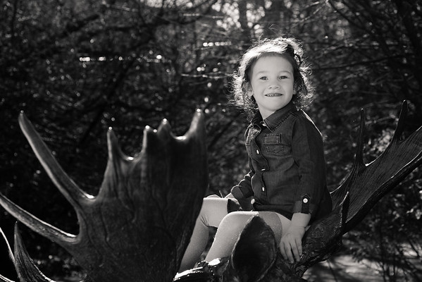 family-portraits-red-butte-garden-802889