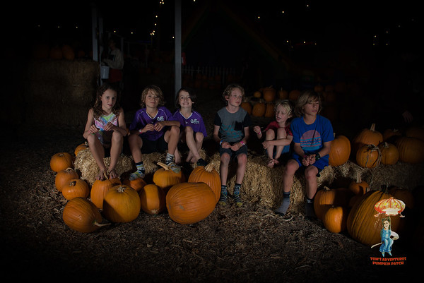 Tom's Adventures Pumpkin Patch in Encinitas by Jerry Roxas Photography. To download your photo(s) for FREE, simply click on the photo you want, and then click on the down arrow in the bottom right hand corner. If we took your photo, please be sure to leave us a truthful review on Yelp and Google Business! To post a review for us, please visit http://bit.ly/reviewjrp. Thank you!