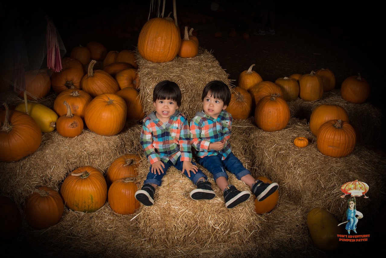 Tom's Adventures Pumpkin Patch in Mira Mesa by Jerry Roxas Photography. To download your photo(s) for FREE, simply click on the photo you want, and then click on the down arrow in the bottom right hand corner. If we took your photo, please be sure to leave us a truthful review on Yelp and Google Business! To post a review for us, please visit http://bit.ly/reviewjrp. Thank you!