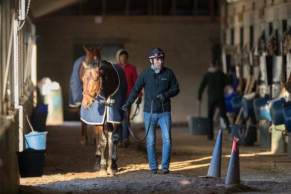 Morning scene in Rudolphe's barn at Keeneland 4.18.18
