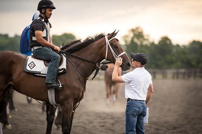 Tom Drury inspects horses on track for morning exercise at Skylight Training Center 7.16.20