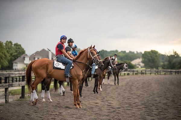 Tom Drury's horses on track for morning exercise at Skylight Training Center 7.16.20