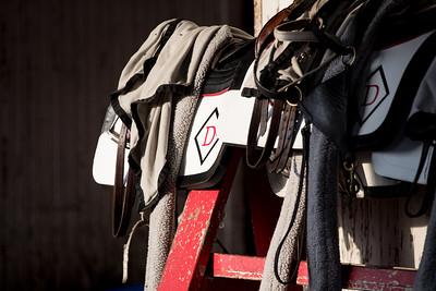 Tom Drury's tack is ready for the next set of horses.