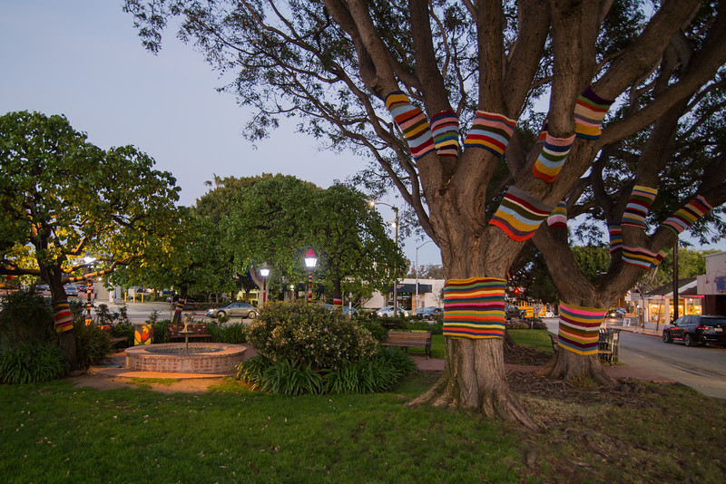 Yarn Bomb in the Pacific Palisades Village Green