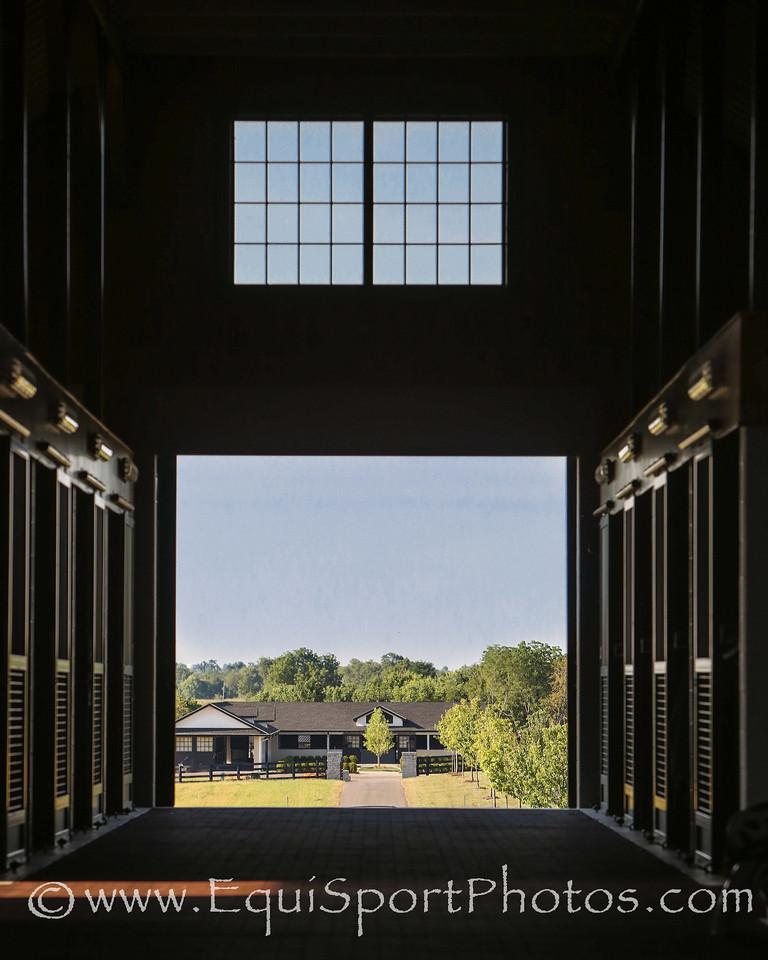 VinMar Farm on 6.27.2012