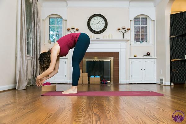 vinyasa-yoga-flow-dearborn-michigan-17