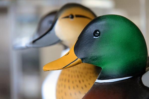 Duck Decoy Museum - Havre de Grace