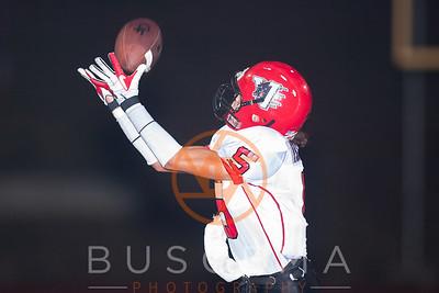 Buscema Photography's photo