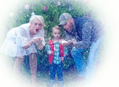 LexAnne Family Mini